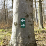 Sign with hiking directions in the forest